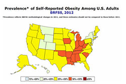 obesity-landing-small-map
